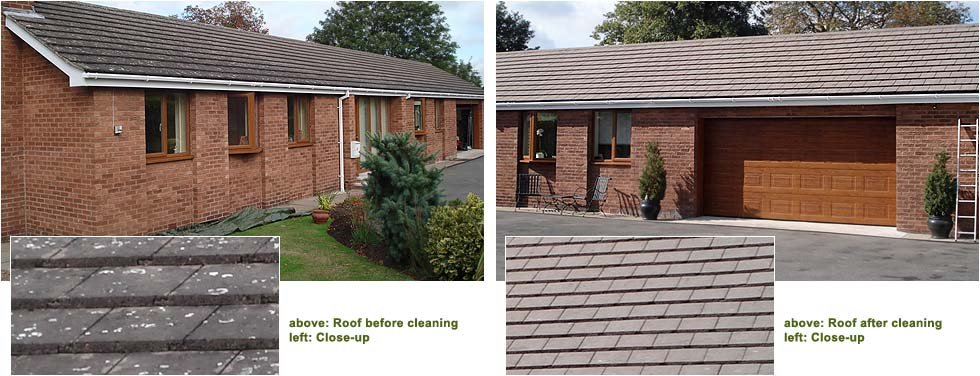 Before and after photographs - a bungalow roof and the very effective cleaning process to remove organic growth and clean tiles